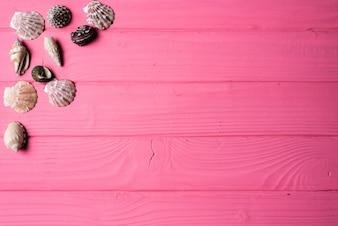 Seashells auf rosa Holz Hintergrund