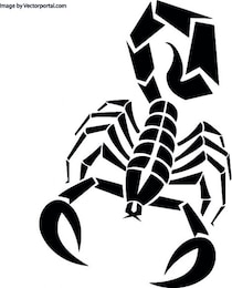 Skorpion in schwarz