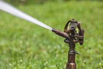 Sprinkler Spritzwasser im öffentlichen Park.