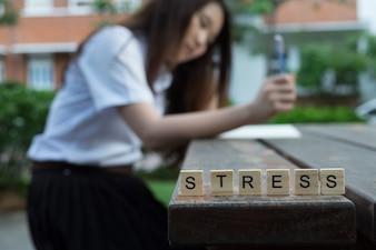 Stresskonzept