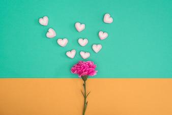 Valentines Süßigkeiten mit Nelke auf grün und orange Hintergrund