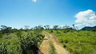 Wald Safari Route in Western Ghats