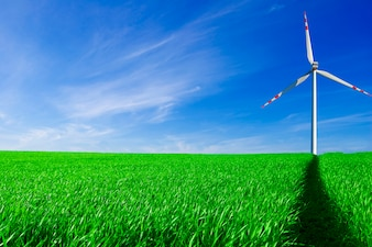 Windrad in einem Feld