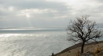 Winter-Meer-Landschaft