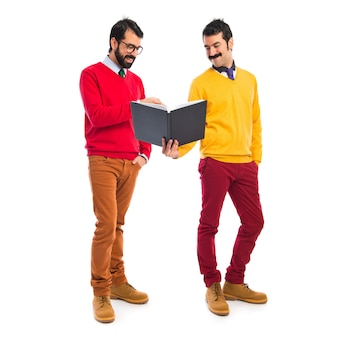Zwillingsbrüder lesen Buch