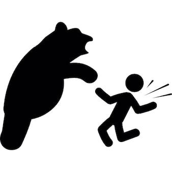 Attack bear