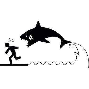 Attack shark