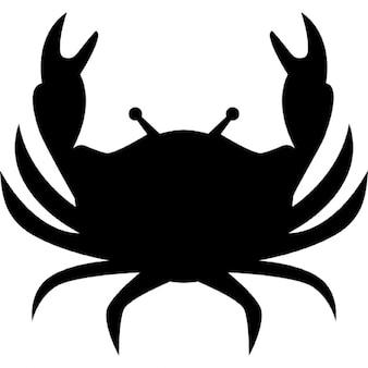 Cancer astrological symbol