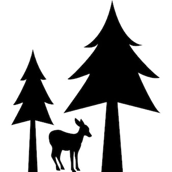 Deer natural home