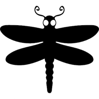 Dragon fly winged animal top view