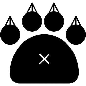 Feline paw