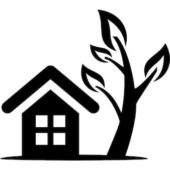側の木と一緒に家