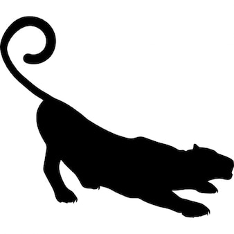 Panther shape