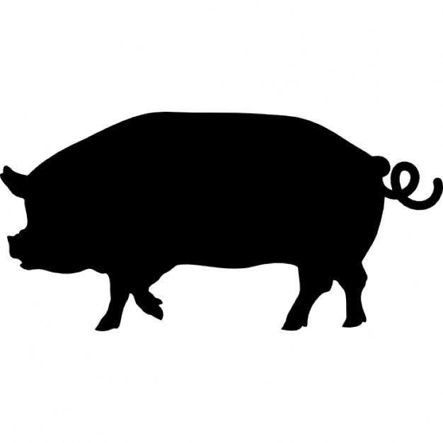 Pig side view silhouette