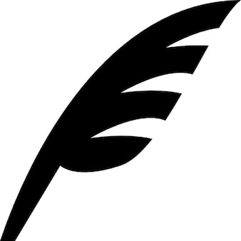 Quill, feather, plume