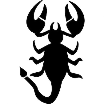 Scorpio vertical animal shape of zodiac symbol