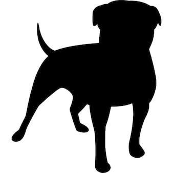 Zynga logotype