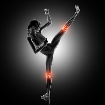 3d render of a female figure in kick boxing pose with knee joints highlighted