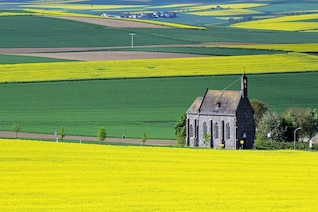 church landscape rape eifel oilseed