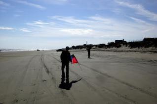 Duck - Kite Flying, sand, flight