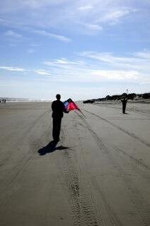 Duck - Kite Flying, kites