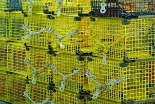 Yellow Lobster Traps