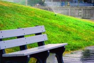 Park Bench, nature