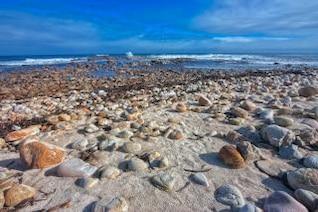 rugged beach   hdr  coastline