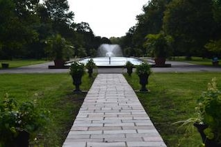 center of the park
