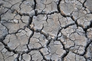 cracked river bed
