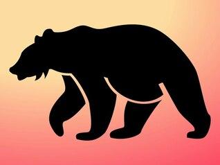 Polar bear animal silhouette