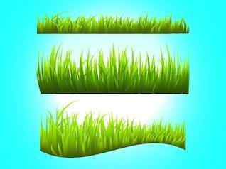 Green meadow decorative natural garden
