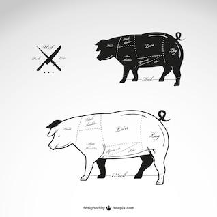 Pork meat vector diagram