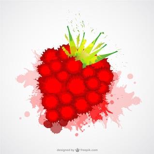 Raspberry vector color splash template