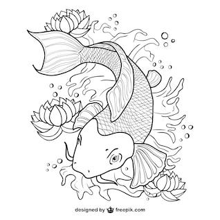 Koi fish line art vector