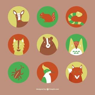 Forest animals flat icons set