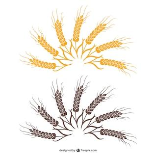 Wheat fan vector