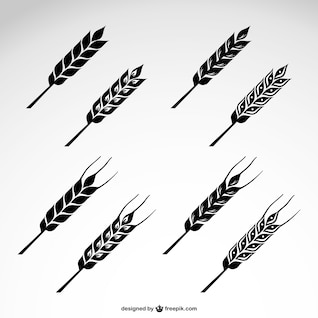 Wheat vector icons set