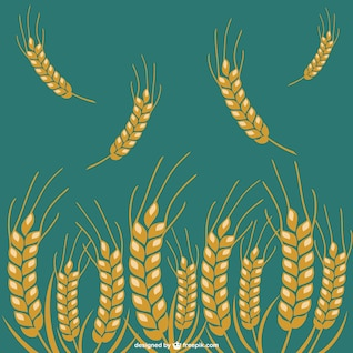 Wheat crop vector icons