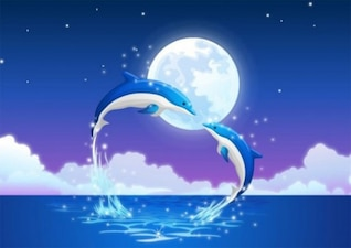 dolphins in the moonlight background vector