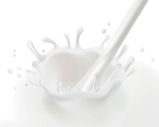 A splash of fresh milk in vector