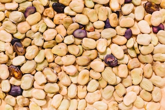 Abstract background of beans