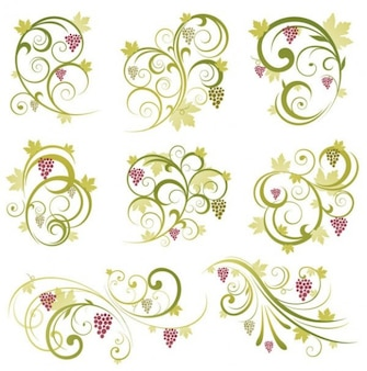abstract floral vine grape ornament vector