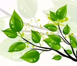 abstract green leaves vector illustration