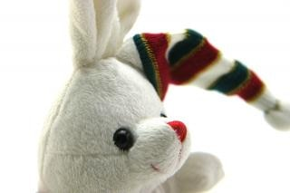 Adorable generic stuffed bunny , birth