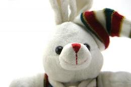 Adorable generic stuffed bunny , gift