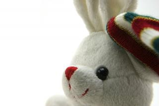 Adorable generic stuffed bunny , long