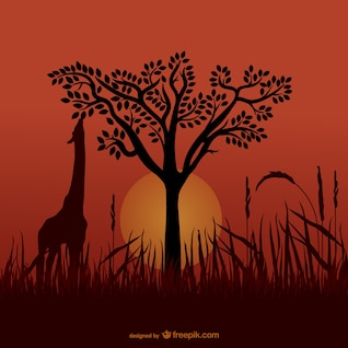African giraffe silhouettes