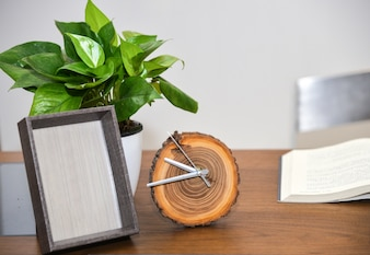 Alarm clock and plant on the desktop