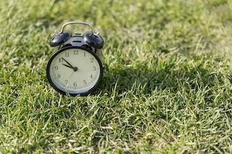 芝生の上目覚まし時計